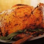 Pastured Organic Chicken Denver, CO :